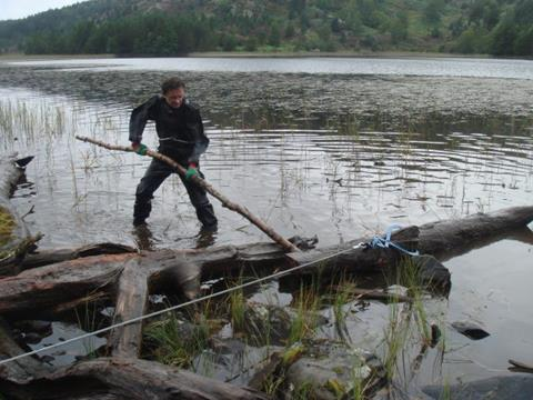 Winching a long-dead tree from Loch Gamnha, in the Cairngorm Mountains. (Photo: Tree Ring Lab, University of St Andrews)