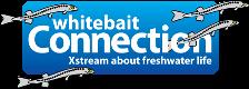 Whitebait Connection logo