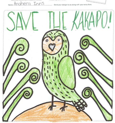 School kids kākāpō t shirt design