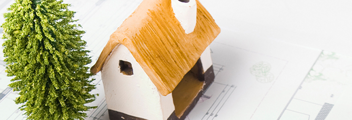 Model of house and tree