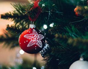 Festive Season image