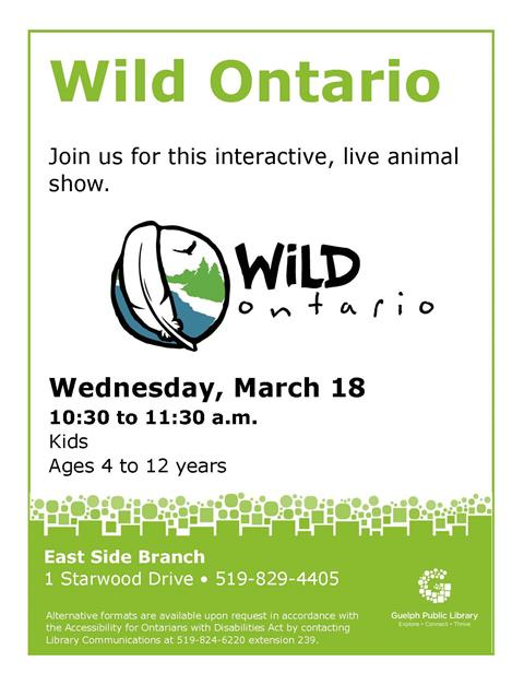 Faster, stronger, stealthier ‐ Ontario's incredible raptors! Get up close and personal with Wild Ontario's incredible live birds‐of‐prey! Ages 4 to 12 years. Wednesday March 18 at 10:30 a.m. in our East Side Branch.