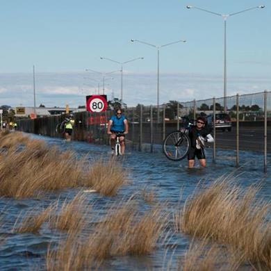 Cycleway - West Auckland