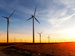 Policy blog: Low oil also a threat to the alternative energy business