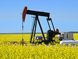 Policy blog: Today's oil prices – Something special or just the same old?