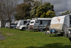 Sites at Kangerong Holiday Park