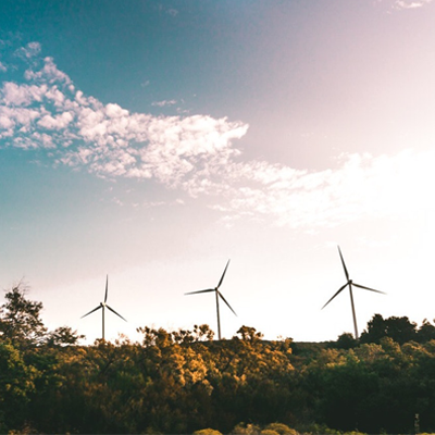 GECA Joins WWF in Calling for a Renewable Recovery