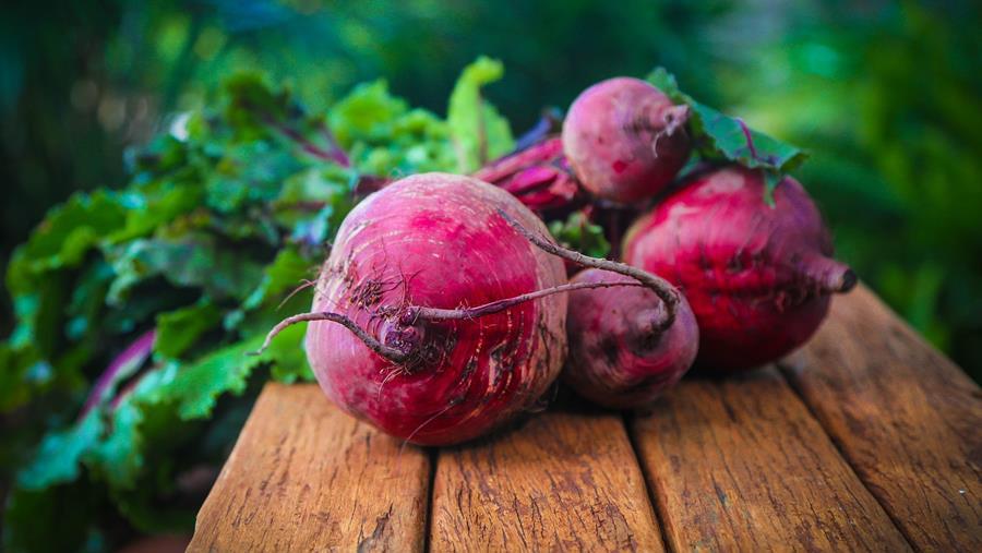 Bury Lane Farm Shop Seasonal Produce Savoy Cabbage