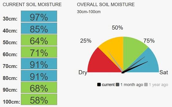 Speed deep soil moisture levels currenly 85 per cent