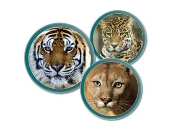 Big Cat Appeal logo. Images courtesy of Shutterstock.
