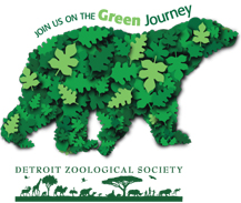 Join us on the Green Journey