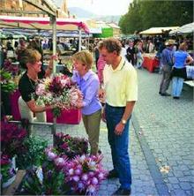 The vibrant Salamanca Market, Hobart, Tasmania