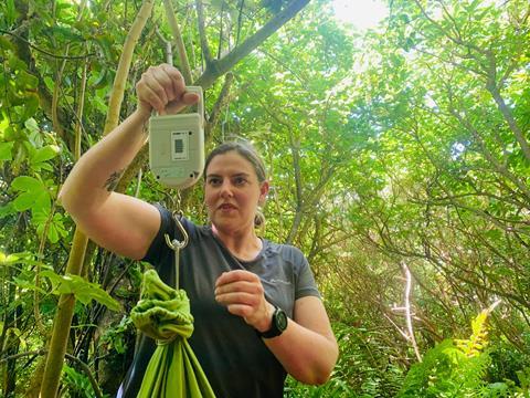 Alyssa in action. Photo D. Vercoe