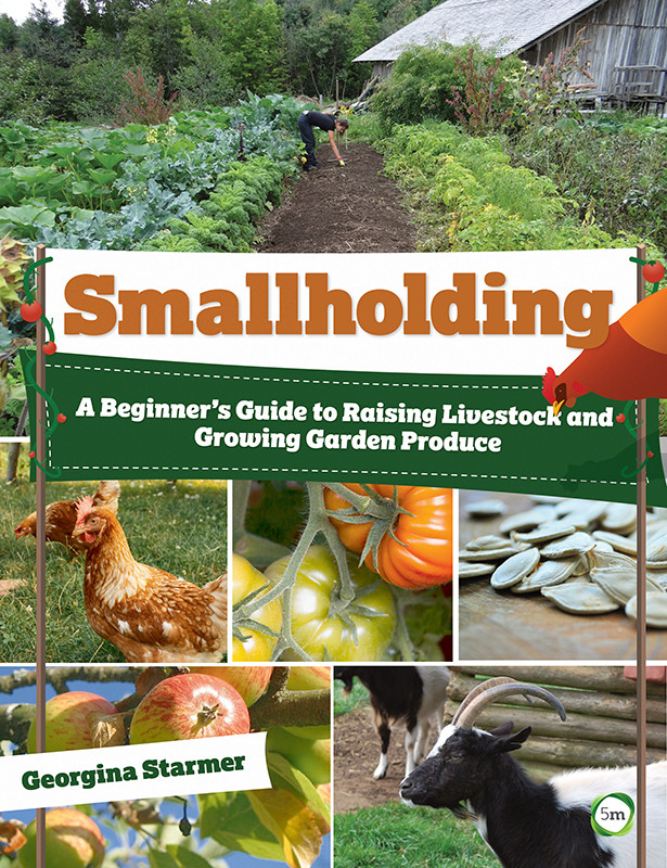 Smallholding - a beginners guide