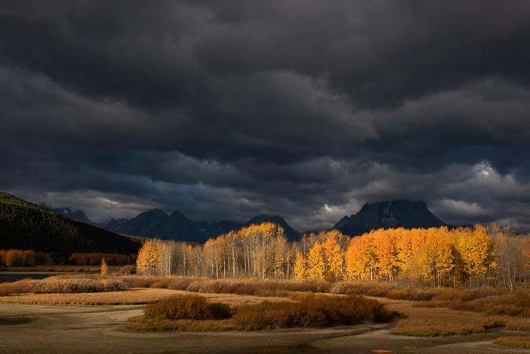 Jackson Hole Photography Tours - Oxbow Bend Grand Teton