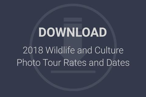 2018 Wildlife and Culture Photo Tour Rates and Dates