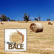 Buy a bale and help support Queensland farmers